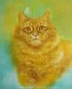 Лучистый кот 50Х61_2015 нет в наличии